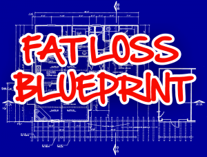 fat loss blueprint1 300x228 FREE REPORT   The Fat Loss Blueprint