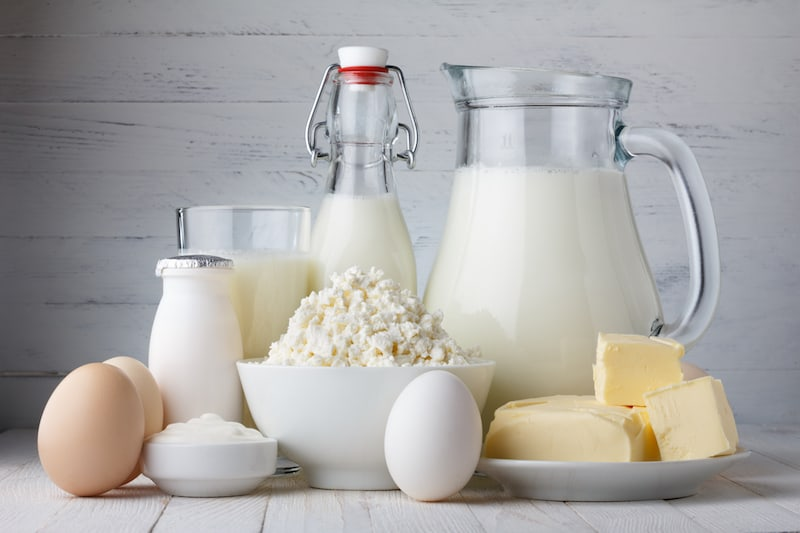 dairy lose weight