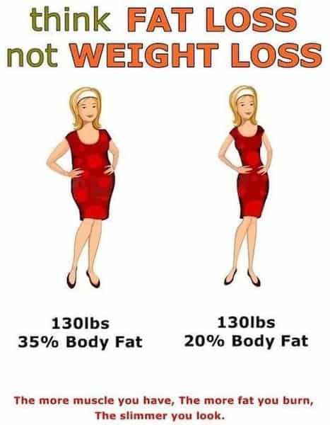 cinnamon for weight loss and body fat