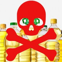 Is Vegetable Oil Healthy? No It Makes You FAT