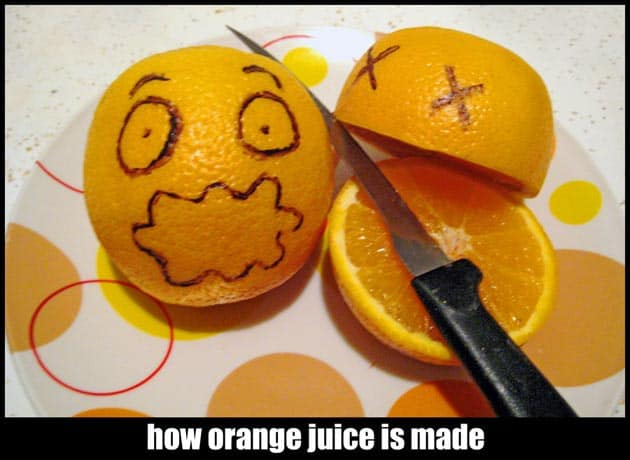 How Orange Juice Is Made by ariesleovirgo 7 Healthy Foods That Cause Belly Fat