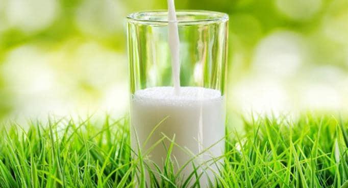 pastured milk