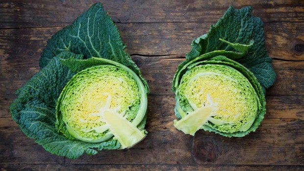 cabbage superfood