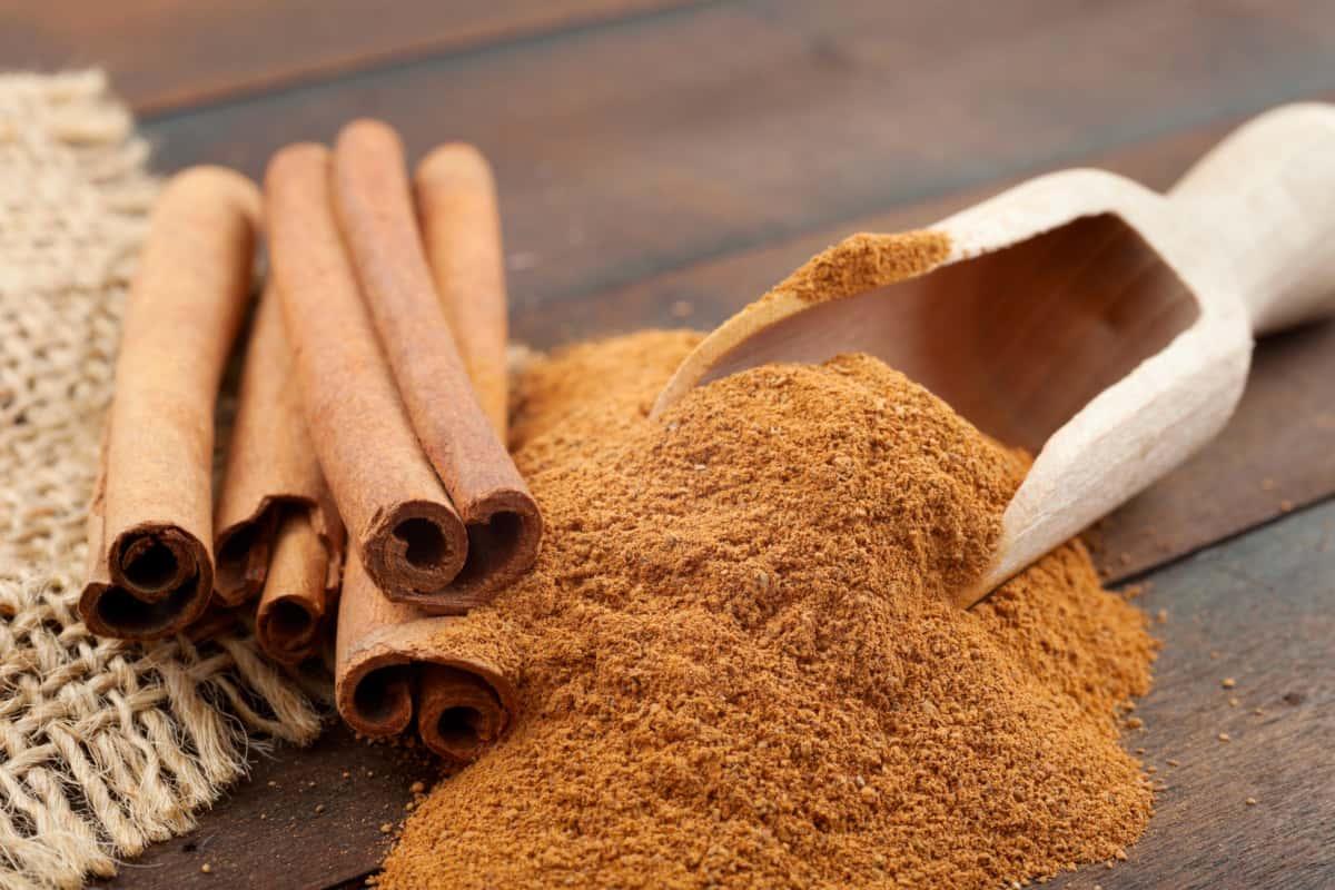 cinnamon medicinal properties