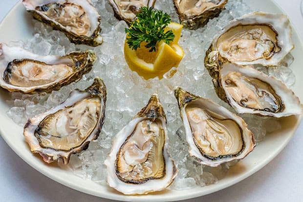 oysters superfood