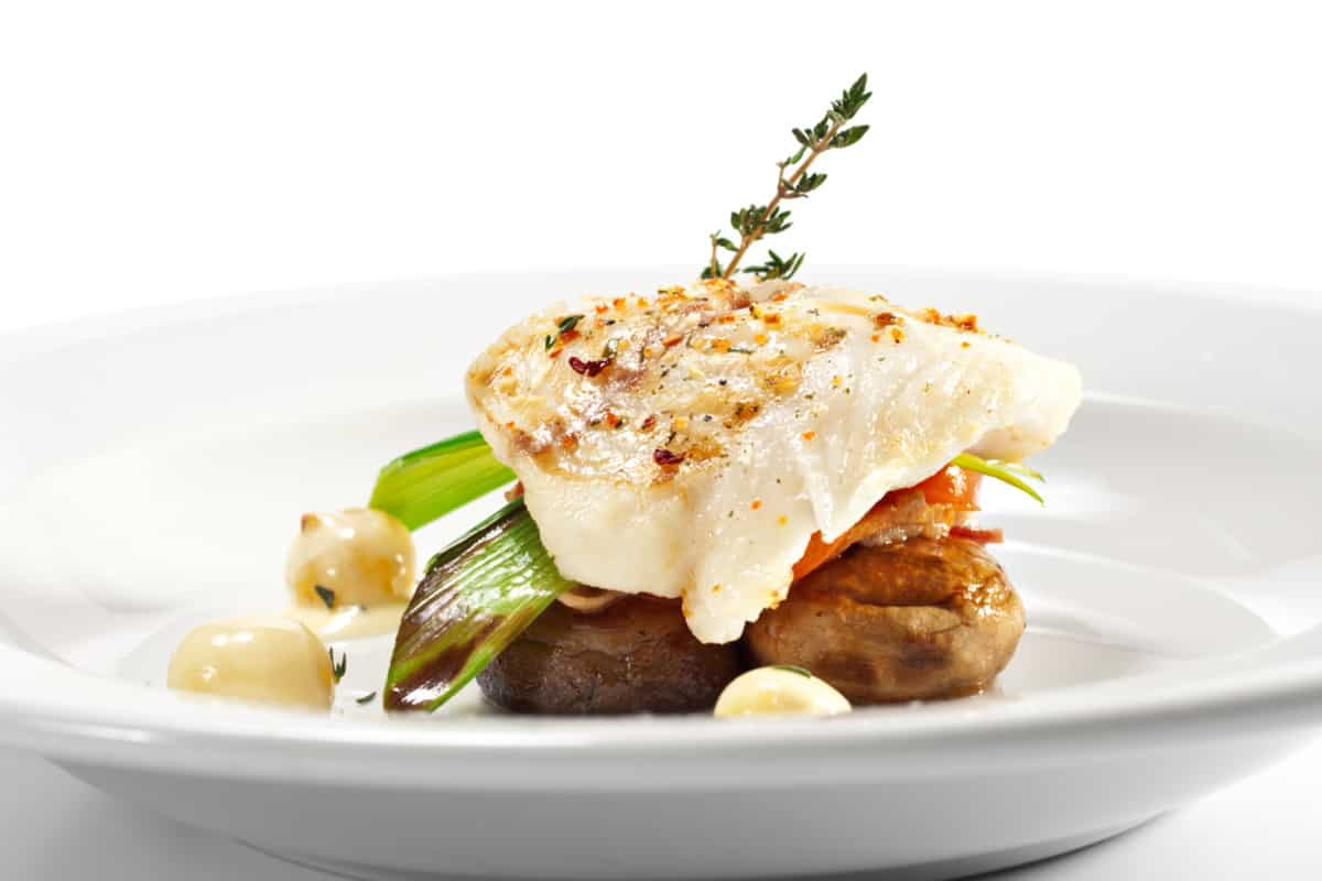 halibut lean protein