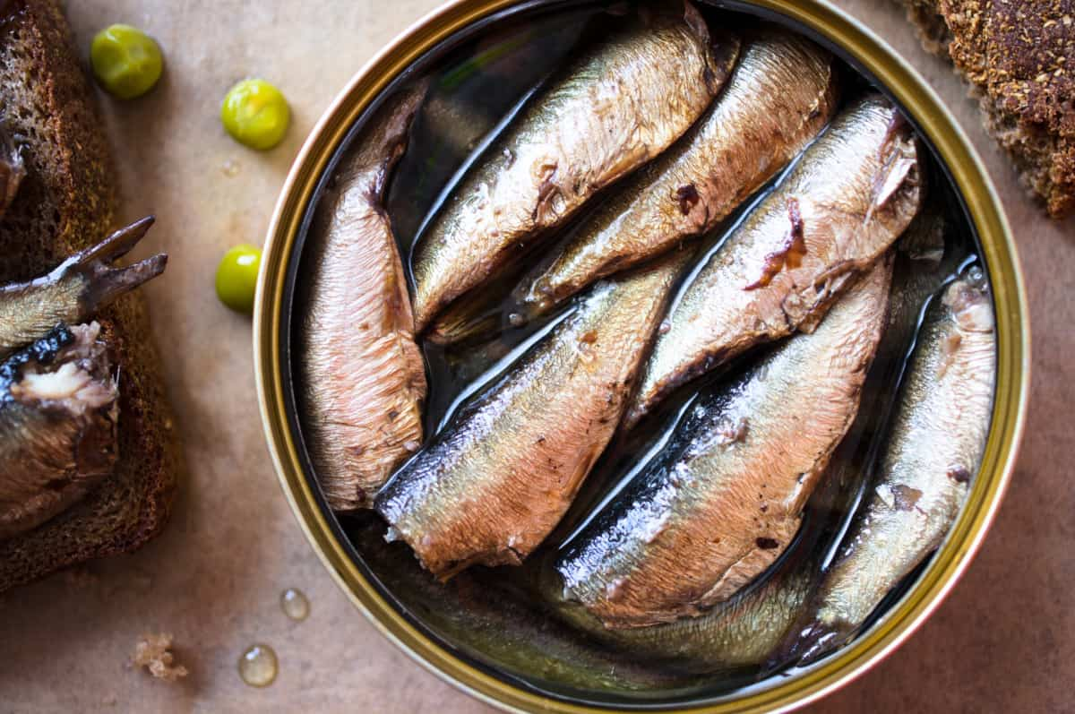 sardines are good for you