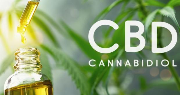cbd oils cannabidiol