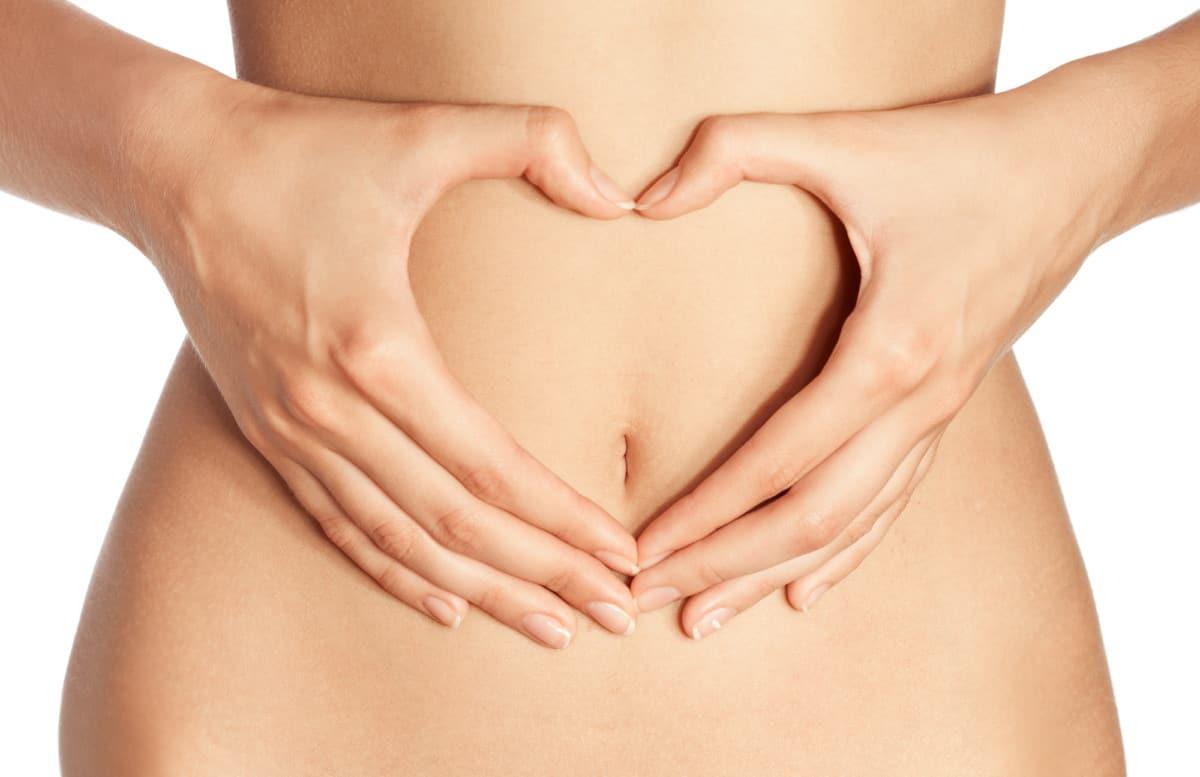 probiotics visceral fat