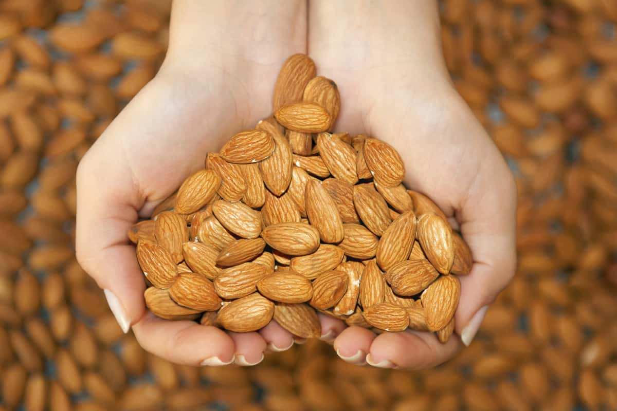 almond butter nutrition benefits
