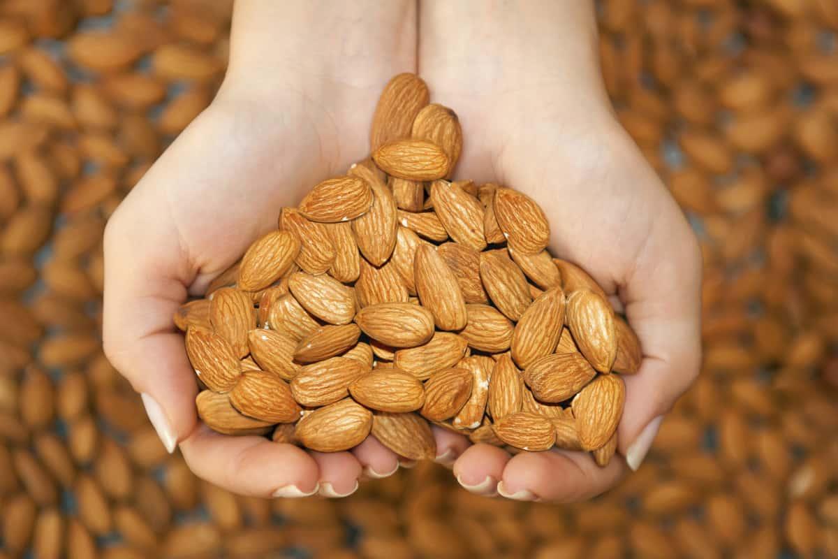 almond butter nutrition benefits