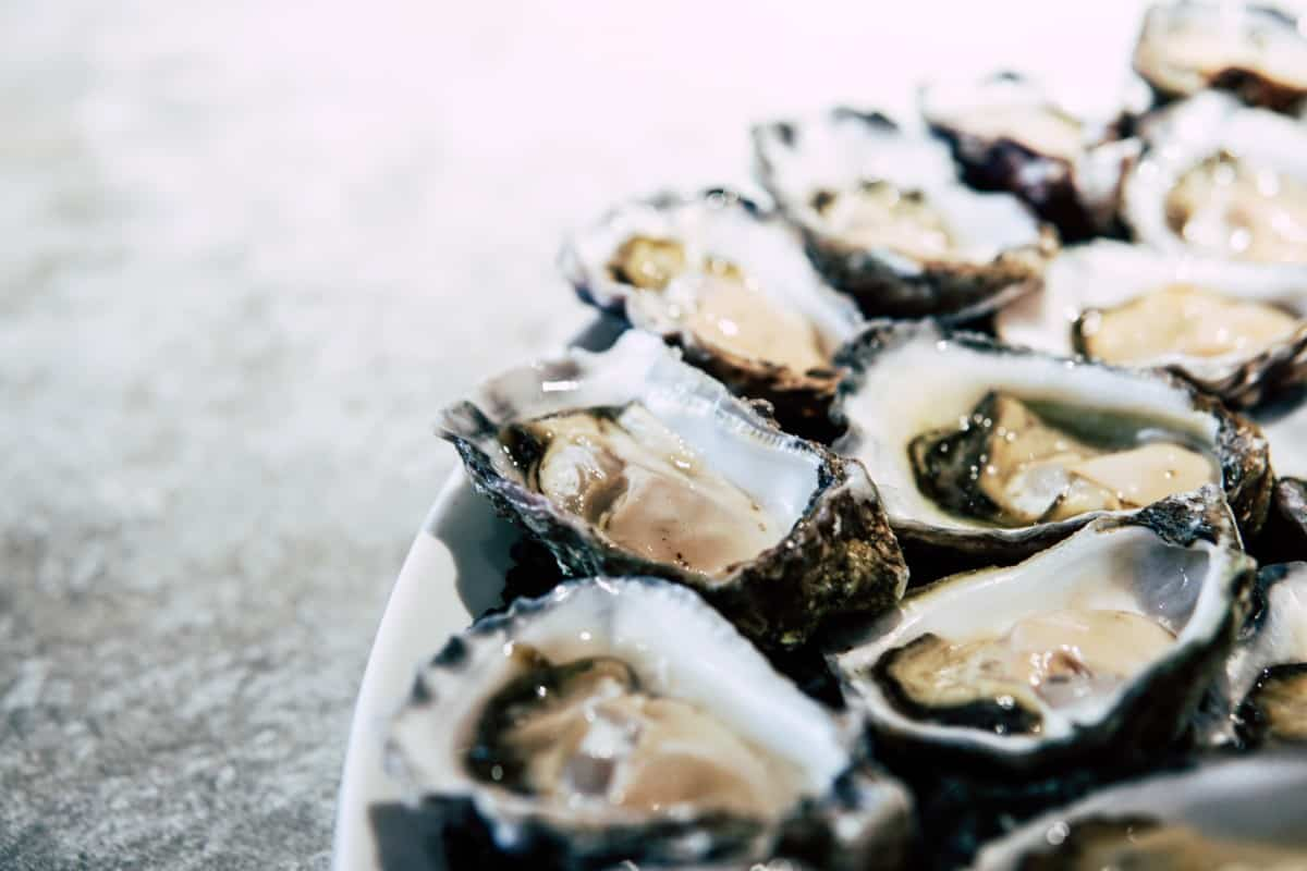 zinc oysters
