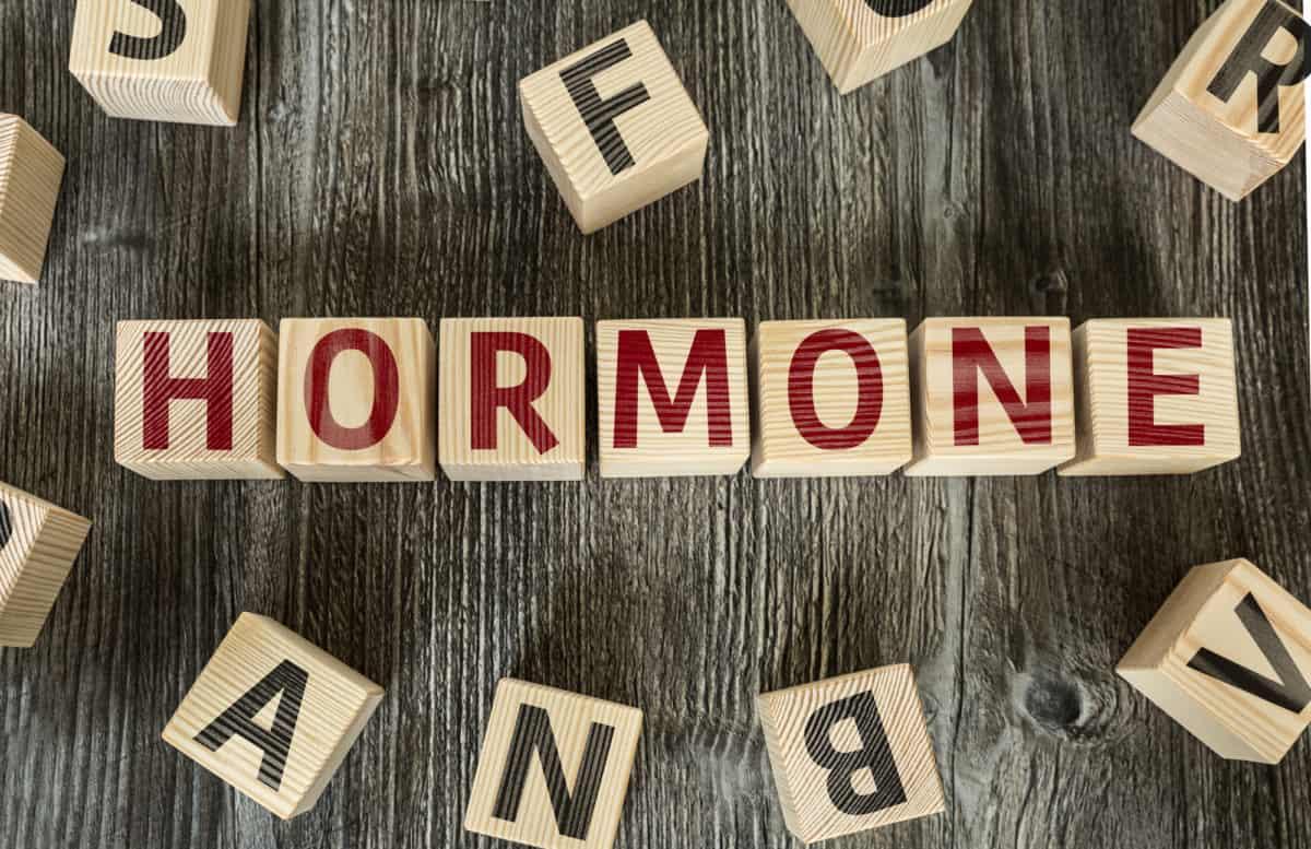 hormones stubborn fat